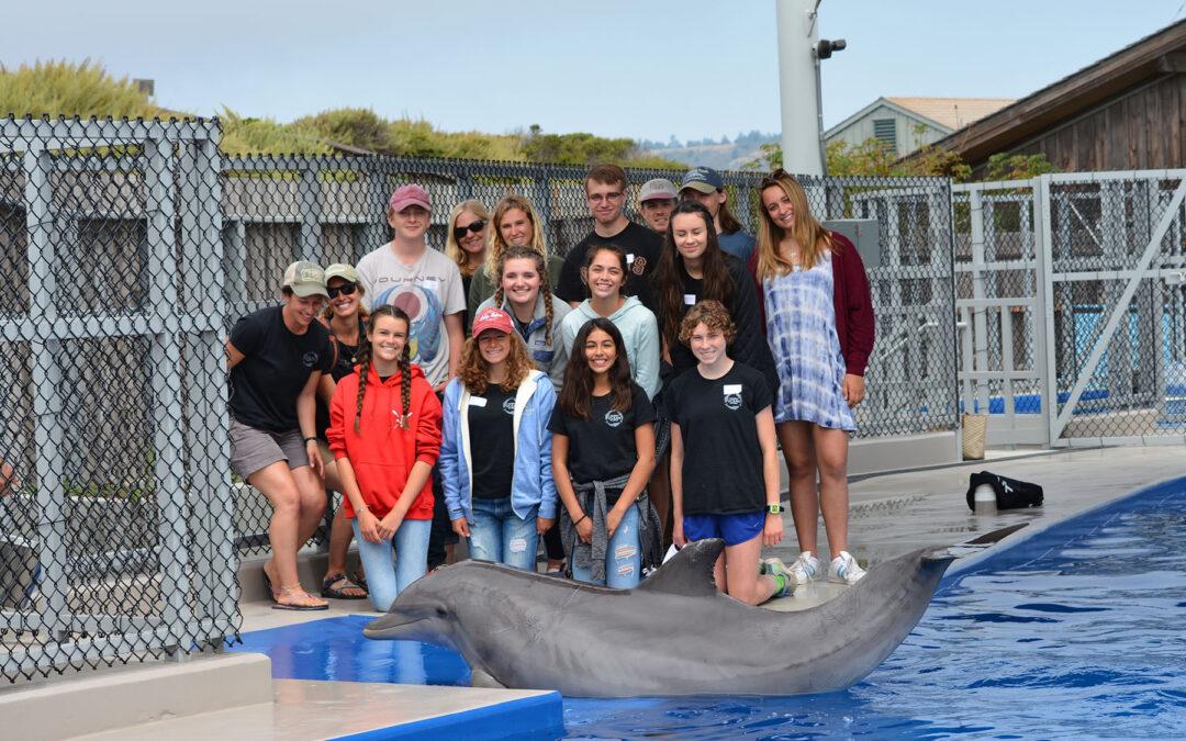 Marine Mammal Scientist in Training Program Update